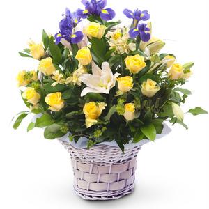 노랑혼합꽃바구니 B209